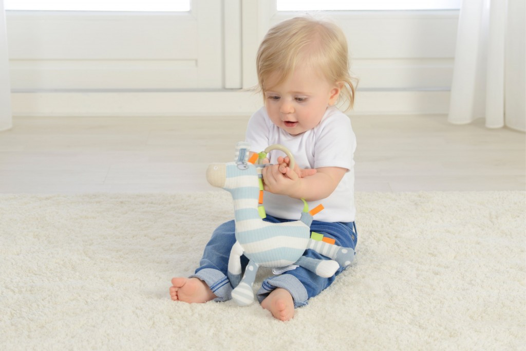 activity zebra baby toy stem sensory science