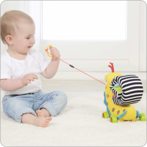 snail stem authenticated toys